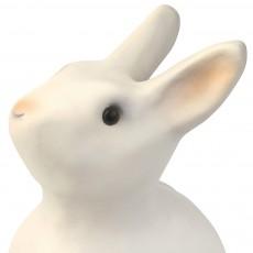 Egmont Toys Hucha Conejo-listing