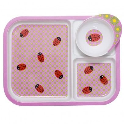 Rice Lady birds plate with compartments-listing