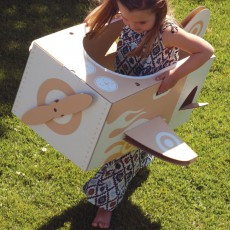 Flatout Frankie Cardboard plane-listing