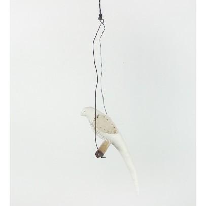 Tamar Mogendorff Uccello su ramo-listing