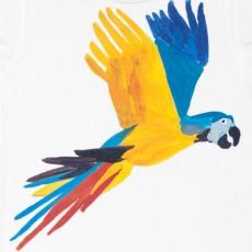 G.KERO Tintin Parrot T-shirt-listing