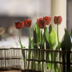 Tse & Tse April Vase-listing