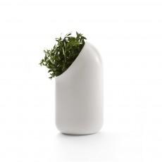 Moustache Vaso di ceramica - ô vase Ionna Vautrin-listing