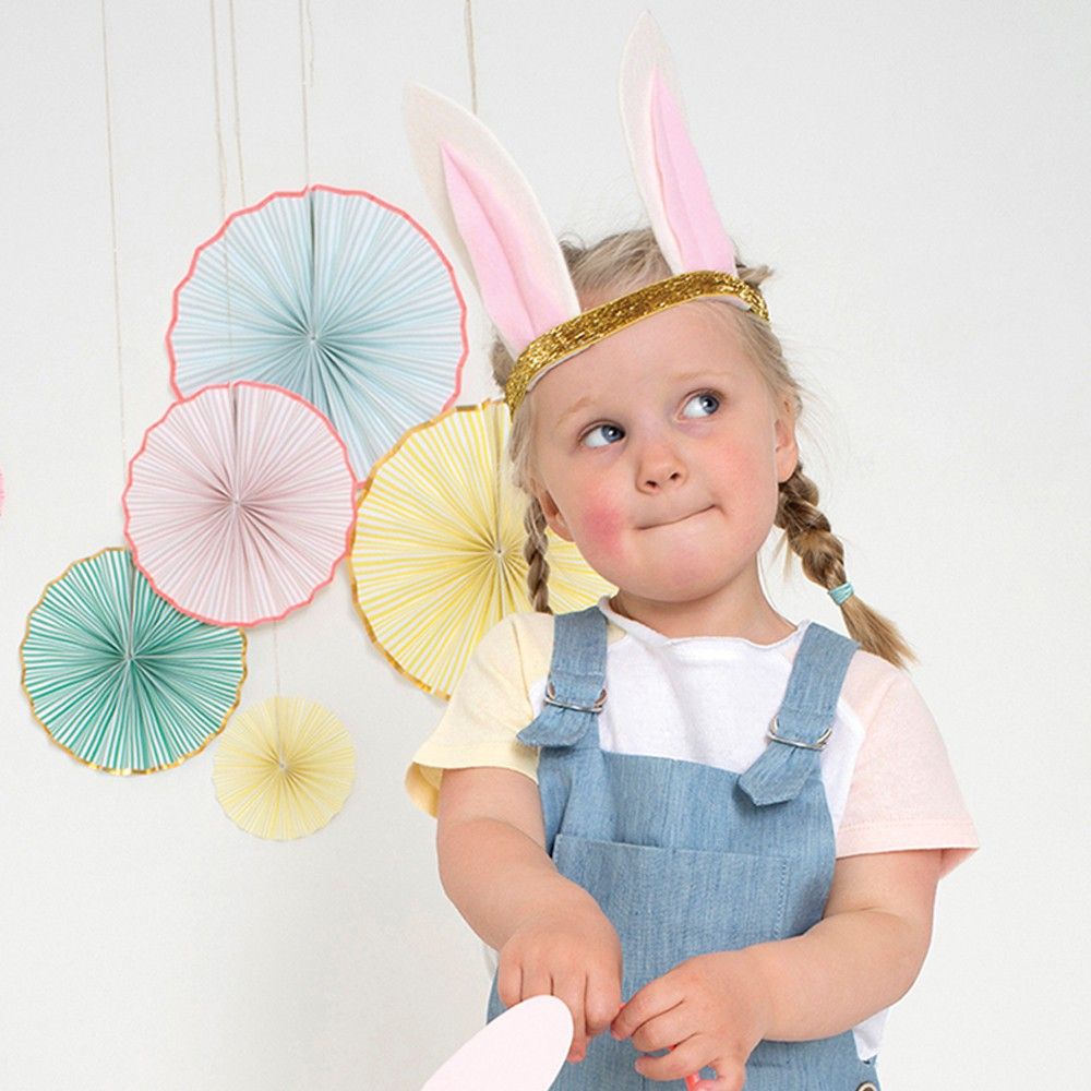 Bunny costume-product