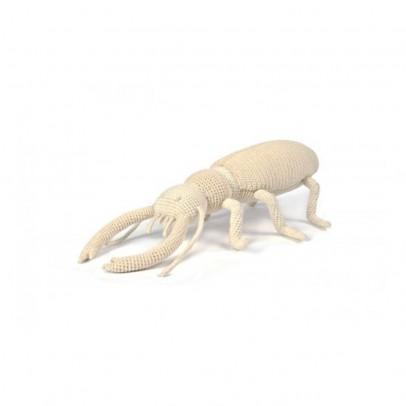 Anne-Claire Petit Escarabajo-listing