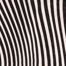 Bobo Choses Jupe Hypnotized-listing