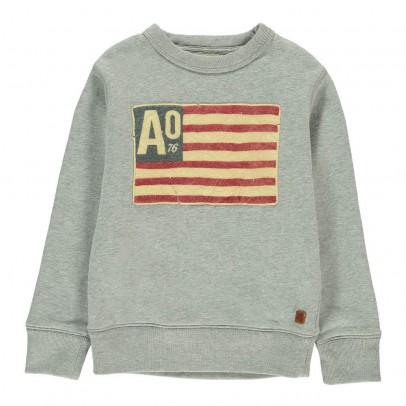 AO76 American Flag Sweatshirt-listing