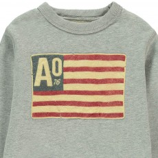 AO76 Sweat Drapeau Americain-listing