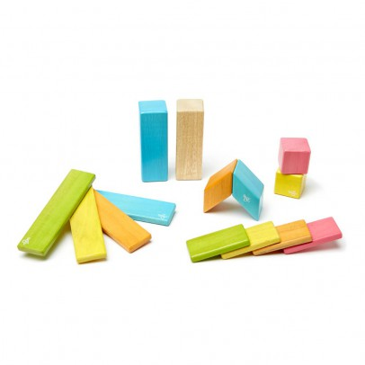 Tegu Set of 14 Wooden Magnets-listing