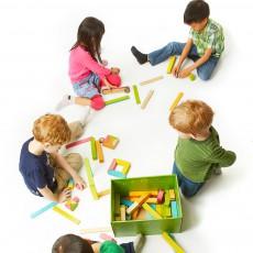 Tegu Caja de 12 piezas magnéticas en madera-listing