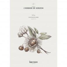 Kerzon Fragranced Candle - Châtaigne Corse 185g-listing