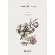 Kerzon Bougie parfumée Figue Tropicale - 185 g-listing