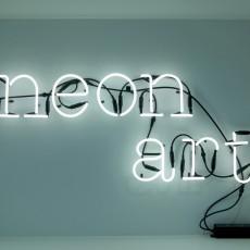 Seletti Neon Buchstabe R-listing