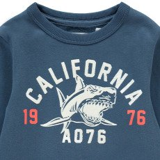 "AO76 Sweatshirt Hai ""California""-listing"