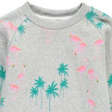 AO76 Sweat Flamants Rose-listing