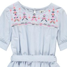 AO76 Embroidered Stripe Dress-product