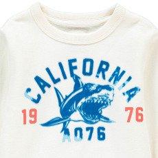 "AO76 ""California"" Shark Sweatshirt-listing"