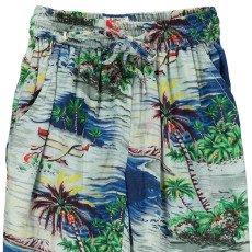AO76 Hawaii Palm Grove Loose Trousers-product