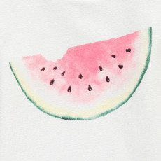 AO76 Watermelon Sweatshirt-product