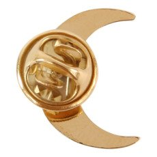 Titlee Gina Moon Gold Brass Pin-listing