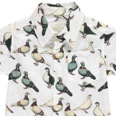 Etiket Chemisette Pigeons Heli-listing