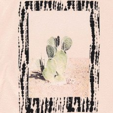 Finger in the nose New Britney Cactus T-Shirt-listing