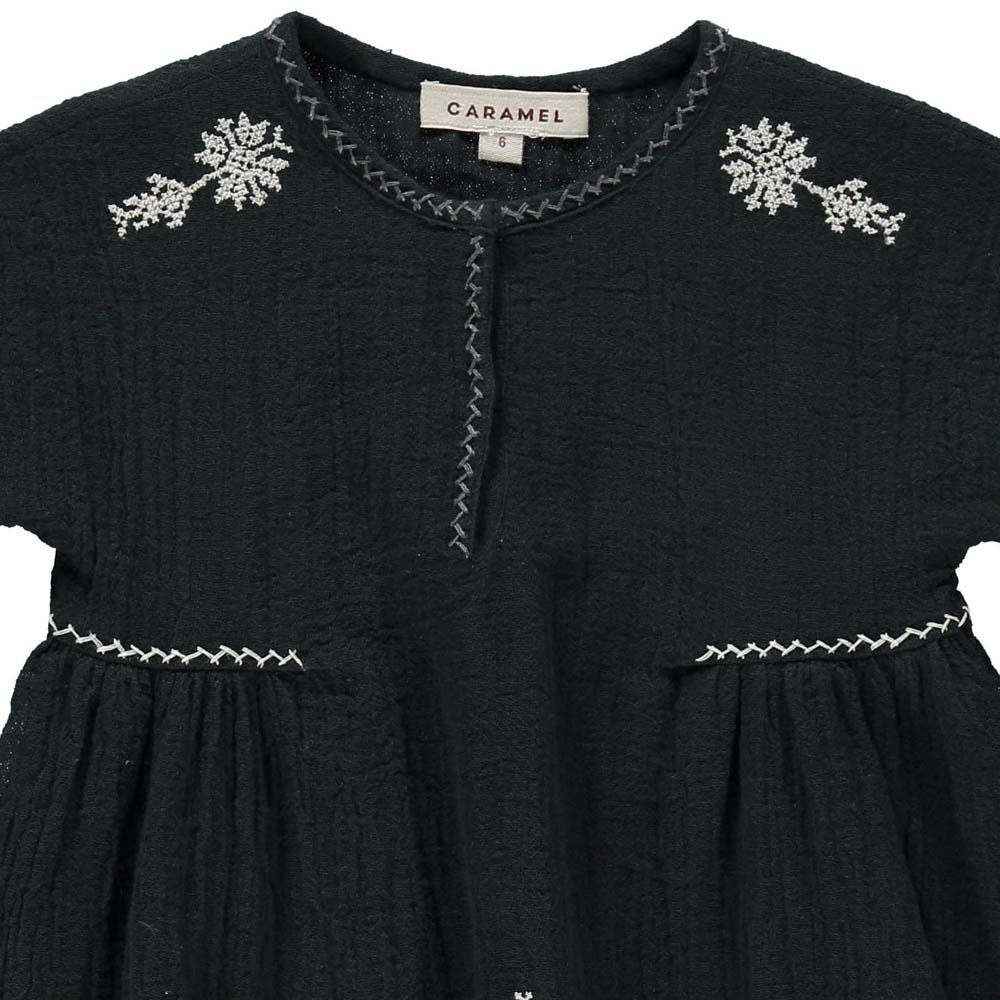 Dandelion Embroidered Dress-product