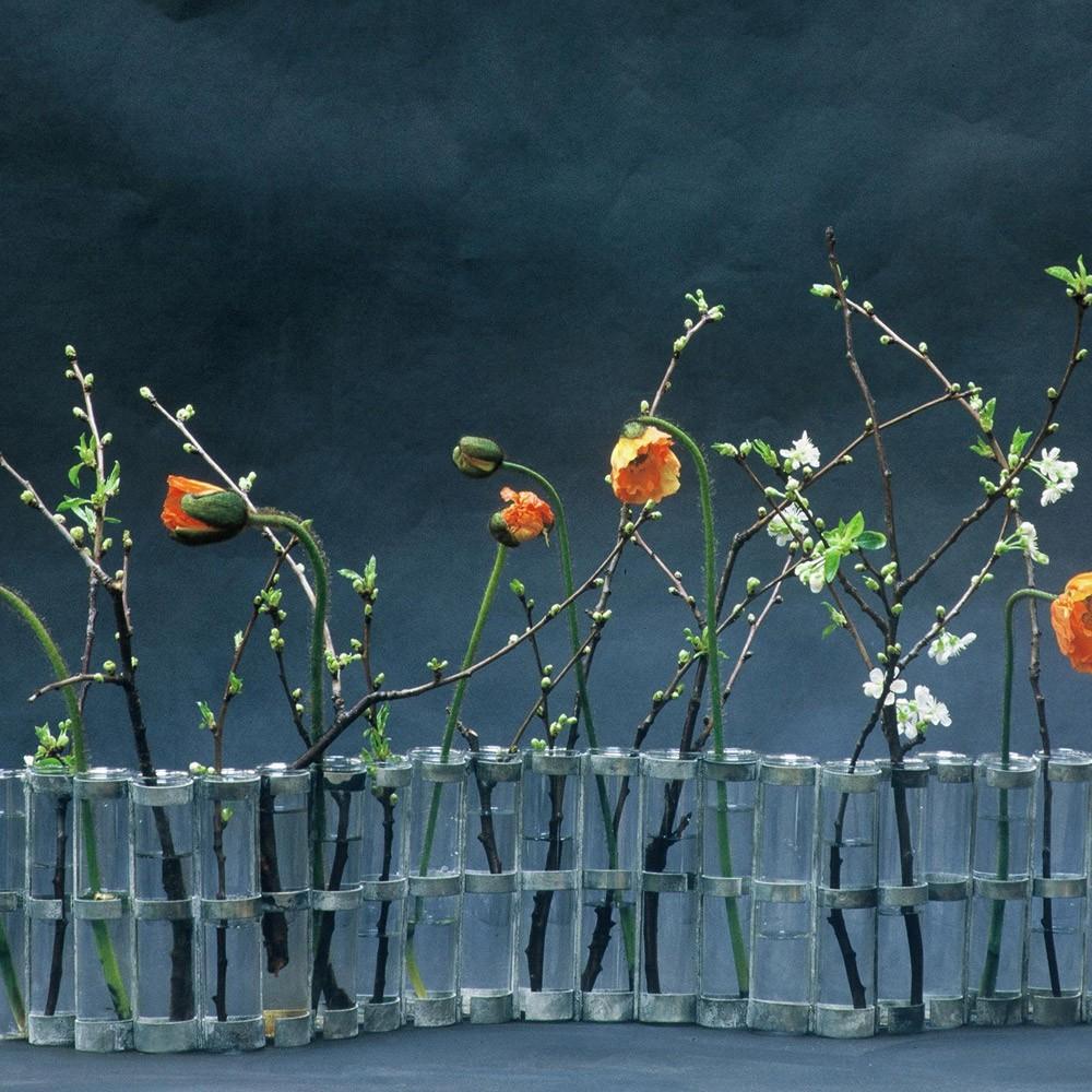 April Vase Transparent Tse & Tse Design Adult