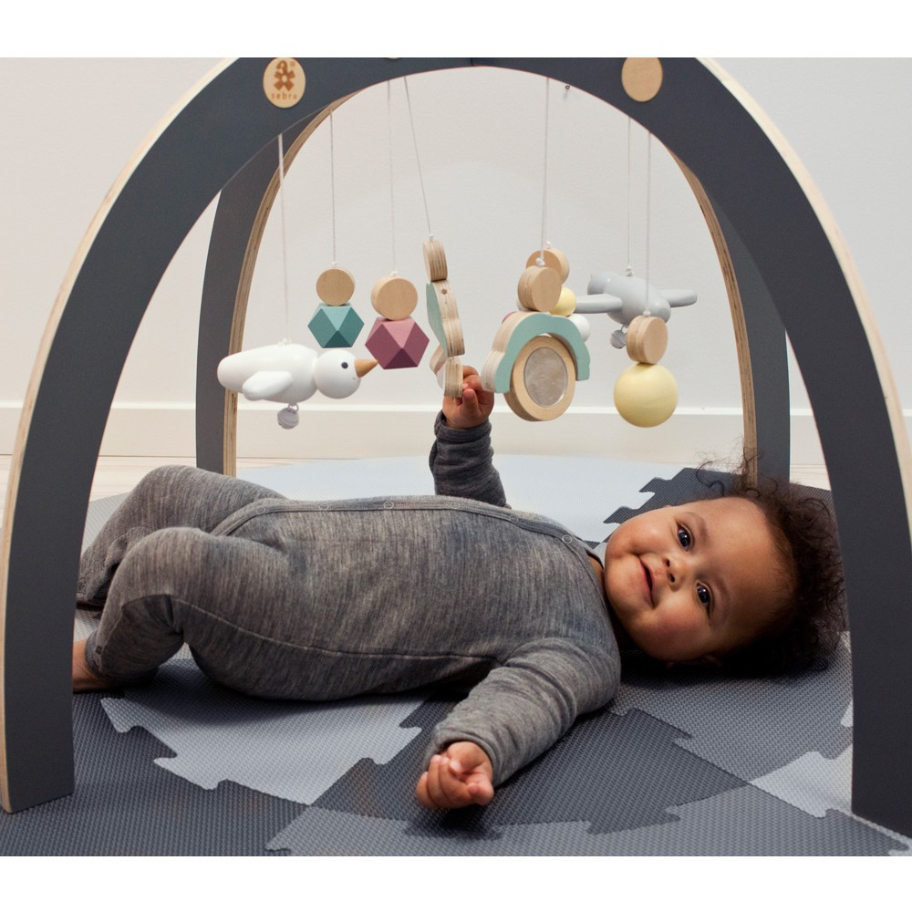 arche d 39 veil en bois multicolore sebra jouet et loisir enfant. Black Bedroom Furniture Sets. Home Design Ideas