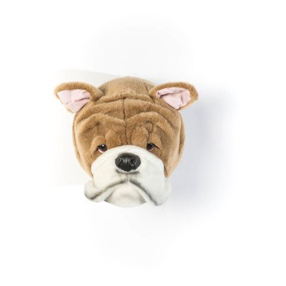 Wild & Soft Bulldog Head-listing