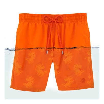 Vilebrequin Fish Swimshorts-listing