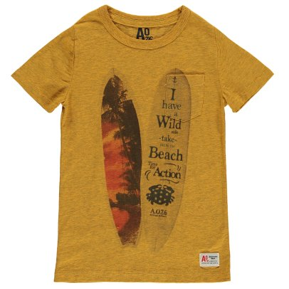 AO76 Camiseta Tablas de Surf-listing