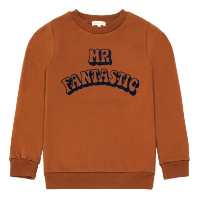 Hundred Pieces Sweatshirt Mr Fantastic-listing
